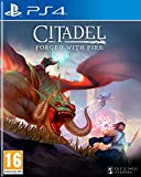 Citadel : Forged with Fire pour PS4