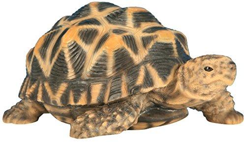 Animaux En Resine Bébé Tortue Etoilée, 3580792005027, Multicolore, 14.85x11x7.15 cm, 200502