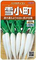 サカタのタネ 実咲野菜5373 雪小町 ハツカダイコン 00925373