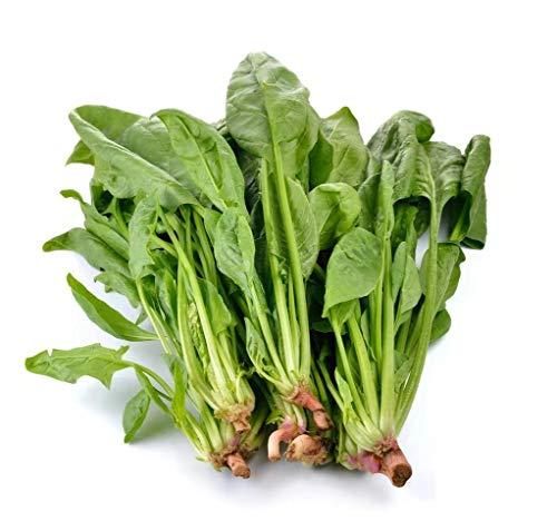 Semi di spinaci 500+ semi di ortaggi biologici di...