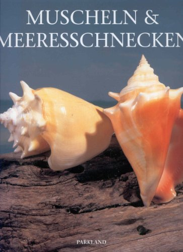 Price comparison product image Muscheln & Meeresschnecken
