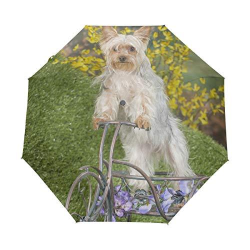 Paraguas de Viaje pequeño a Prueba de Viento al Aire Libre Lluvia Sol UV Auto Compacto 3 Pliegues Cubierta de Paraguas - un Perro Paseos en Bicicleta jardín