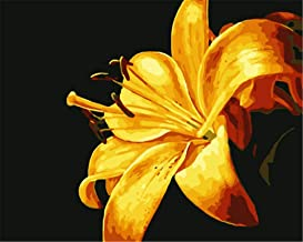 Painting by Numbers DIY Oil Painting for Adult Yellow Flowers, Plants Canvas Print Wall Art Decoration 40X50Cm