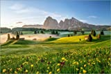 Poster 30 x 20 cm: Frühling auf der Seiser ALM Südtirol