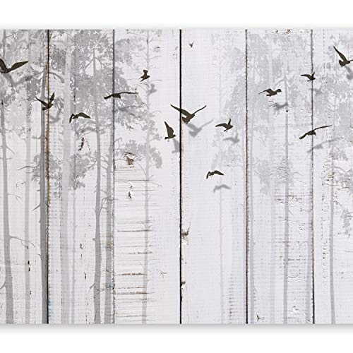 potente Papel tapiz fotográfico Muland Table 350 × 256cm Papel tapiz XXL no tejido Decoración de pared decorativa Papel tapiz fotográfico moderno para diseño fotográfico Gray Bird Tree fC-0178-aa también recomendado para casa