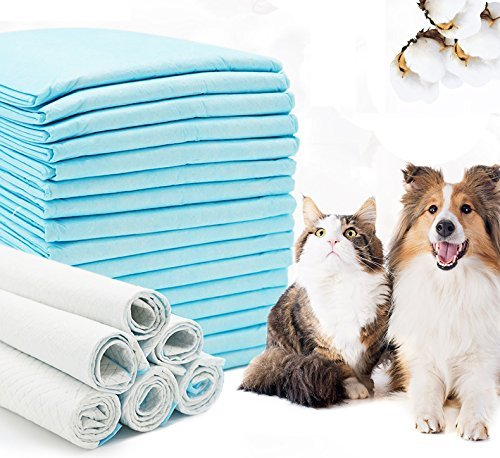 BPS® Empapadores de Entrenamiento para Perros Gatos Perfumes con Feromonas para Atraer los Cachorros y Simplificar el Entrenamiento (60 * 60 cm 40pcs) BPS-2167*2