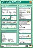 Lernposter Mathematik 3: Bruchrechnen, Prozentrechnen und Dreisatz: Dieses Lernposter vermittelt das Grundwissen in Bruchrechnen, Prozentrechnen und Dreisatz.