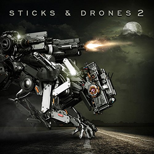 Sticks and Drones 2