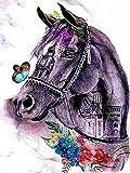 Xykhlj Pintura por numeros para Adultos - Animales - Caballos de Colores - Lienzo preimpreso - Principiantes Niños DIY - DIY Decoración del hogar - 40x50cm - (Sin Marco)