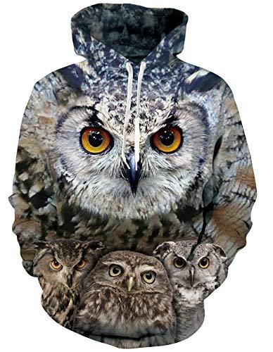 RAISEVERN Frauen Mens Autimn Winter 3D dumme Eule ausdrucken lustige Pullover Hoodie Sweatshirt für Casual Wear