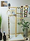 Freisitz aus Holz, Papageienspielzeug, Kletterbaum für Vögel, wahlweise Buche/Haselnuss, Papageienspielzeug, mit Schaukel