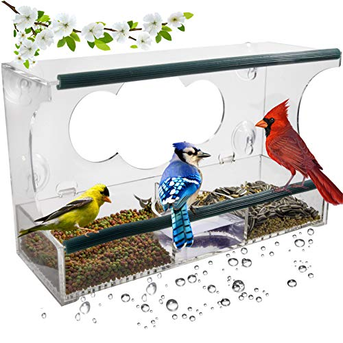 Birdious Deluxe Window Bird Feeder: Strong Suction Cups Outside Mount, Large Clear See-Through Birdfeeder House and Removable Tray. Best Birding Gift Idea