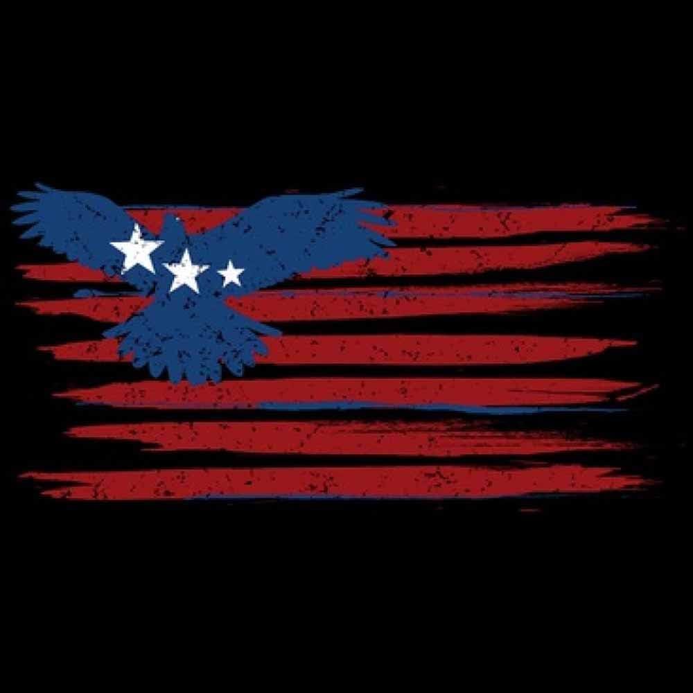 Patriotic Red White Blue Eagle Flag Printed T-Shirt