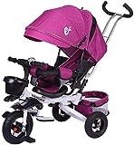 Cochecitos de bebé triciclo, toldo ajustable, arnés de seguridad, toldo multifunción, plegable, apto para 10 meses y 5 años