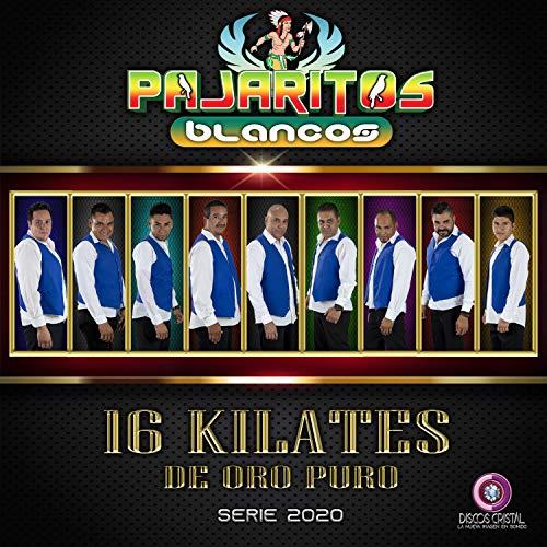 16 Kilates de Oro Puro