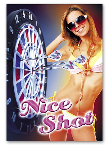 Dart-Poster Nice Shot