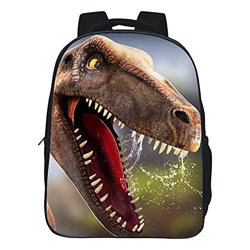 Acant Dinosaurio Mochila Escolar Niños Mochila Ligera Regalos para Niñas y Adolescente (Color : B, Size : 30 * 24 * 12CM)