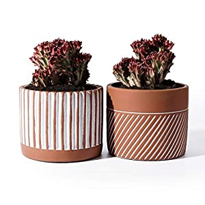 POTEY Cement Planter Flower Pot – 4.8 Inches Bonsai Containers Unglazed Medium for Indoor Plant with Drain Hole – Terracotta, Set of 2