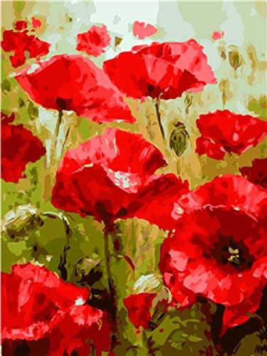 WENXIUF Pintar por Numeros para Adultos Niños Flores Rojas, DIY Pintura al óleo con Pinceles y Pinturas Impresión de la Lona Mural Decoración hogareña 40x50cm Marco