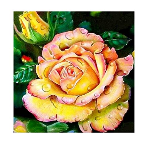 MXJ: Kit de Pintura con Diamantes 5D para Manualidades, diseño de Punto de Cruz con Diamantes de imitación, para decoración de la Pared del hogar, Color Rosa, 30,5 x 30,5 cm