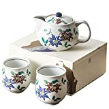 Daily Accessories Teteros de té de cerámica de porcelana una olla dos tazas nueve valles pintado a mano Set de té estilo japonés y viento Tetera 330 ml (taza de té 170 ml)