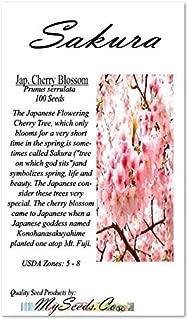 Best japanese sakura seeds Reviews