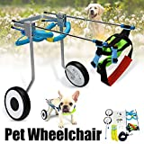 Cat Wheelchairs Review and Comparison