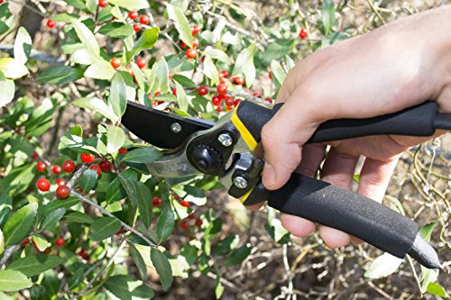 Bastex Professional Bypass Pruning Shears