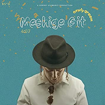 Meshiga Git