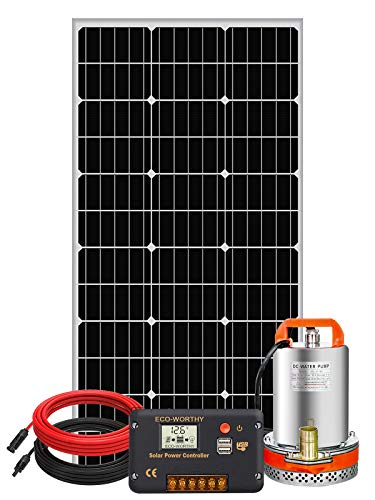 Pumplus 12V 100W Solar Water Pump Kit - 100W Solar Panel + 12V Water Pump + 20A LCD Display PWM Controller + 1 Pair of Solar Cable for Remote Watering, Garden, Farm Irrigation, Tank Filling