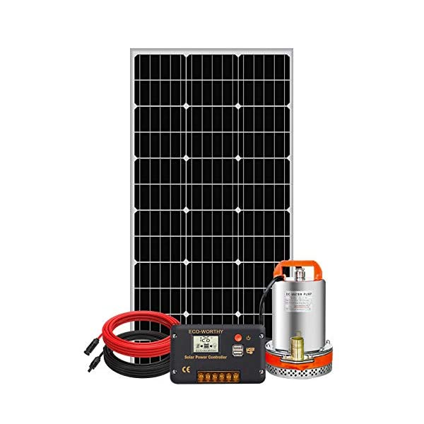 Pumplus 100W Solar Water Pump Kit – 100W Solar Panel + 12V Water Pump + 20A Pump Controller for Shallow Well, Water…