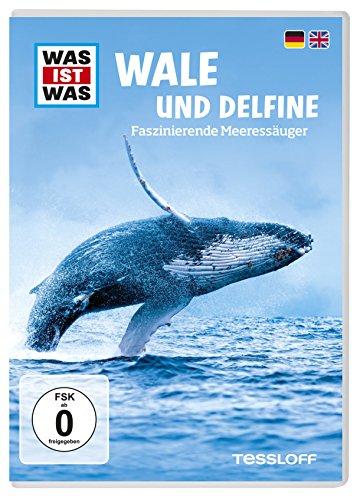 Was Ist Was DVD Wale und Delphine. Faszinierende Meeressäuger