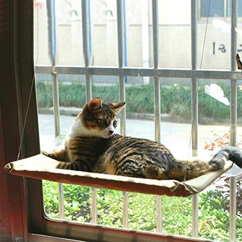 ANPI Lit Suspendu pour Chat, Hamac de Chat Suspendu à la Fenêtre avec Ventouse, Confortable Durable Solide Facile à Nettoyer Installer par Différents modèles jusqu'à 15kg, Seule Couche, Jaune Tissu