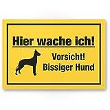 Komma Security Hier wache ich Vorsicht bissiger Hund - Hunde Kunststoff Schild Hinweisschild Gartentor Gartenzaun - Türschild Haustüre Warnschild Abschreckung Einbruchschutz - Achtung Hund