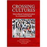 Crossing Cultures: Intercultural Communication in a Connected World (English Edition)