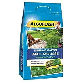 Algoflash Engrais Gazon Anti-Mousse Favorise la Repousse 3,6Kg