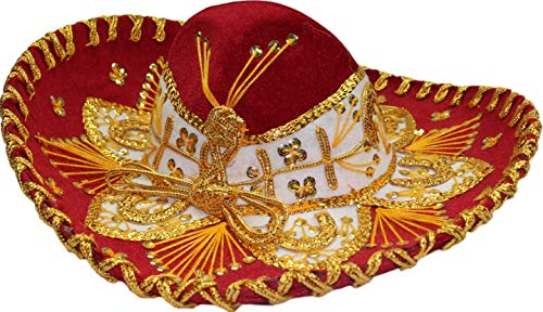 Authentic Mariachi Flowers Style Hat Fancy Premium Mexican Sombrero Charro Hats Made in Mexico (Choose Size & Color) (Kids, Red/Gold)
