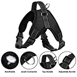 Slowton Dog Harness, No Pull Padded Dog Vest Harness, Reflective Pet Vest with Handle Easy Control for Small Medium Large Dogs Training Walking (Small, Black) (Medium, Black)