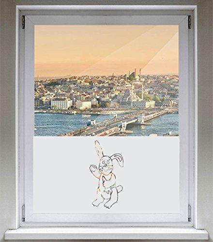 INDIGOS UG Sichtschutzfolie Glasdekorfolie Fensterfolie mit Motiv satiniert Blickdicht - E703 Babykarotten Esser - 800 mm Länge - 500 mm Höhe - Viereck