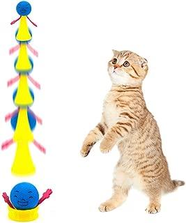 Amazon.es: accesorios para gatos: Coche y moto