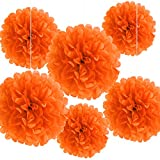 Bining Paper Pom Poms Hanging Paper Flower Ball Wedding Party Celebrations Decorations Outdoor Decoration Flowers Craft for Party Birthday party (BIN-Orange 6pk)