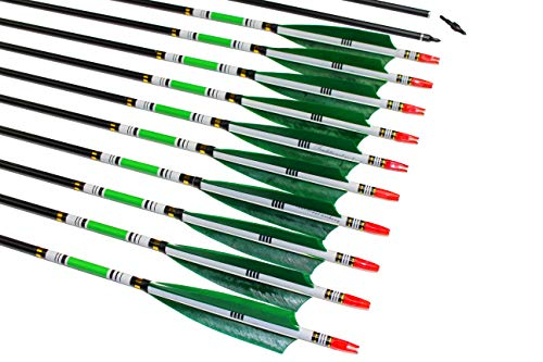 TTAD Carbon Arrows Green Turkey Feather Targeting Arrows