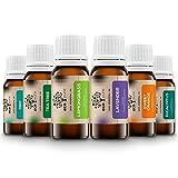 ECO PURE`s - Set di oli essenziali, 6 oli profumati per diffusore, massaggio e aromaterapia, 100% naturale (lavanda, albero del tè, eucalipto, menta, arancia dolce, citronella), set regalo