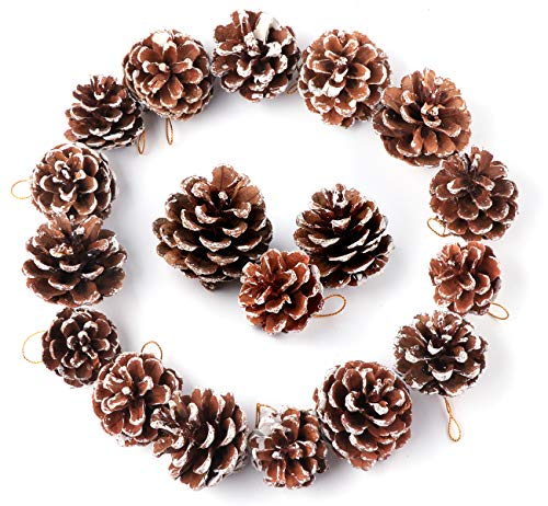 Anstore 30 Snow Christmas Pine Cones Ornament Natural PineCones With String Pendant Crafts for Gift Tag Wreaths Garlands Xmas Tree Party Hanging Decoration