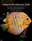 Colorful Freshwater Fish: 15 Colorful Freshwater Fish to Liven up your Aquarium