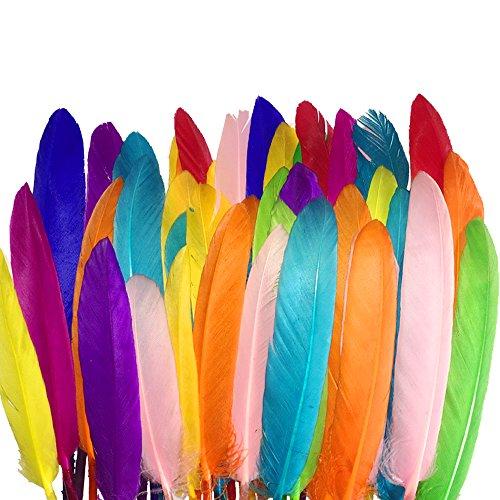 Sunmi 300 kleurrijke veren 10-15 cm / 4-6''