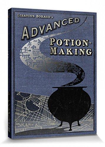 Harry Potter 1art1 Advanced Potion Making Cuadro, Lienzo Montado sobre Bastidor (80 x 60cm)