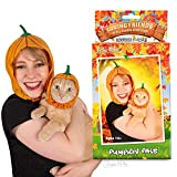"Archie McPhee Loving Friends Kitty Cuddle Costumes, Pumpkin Pals pet Apparel, 8"""