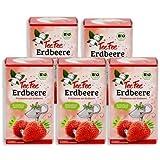 TeeFee Bio Früchtetee mit Erdbeere, 5er Pack (5x20 Teebeutel) | Kindertee | natursüß und vegan | Der Bio Tee für Groß und Klein