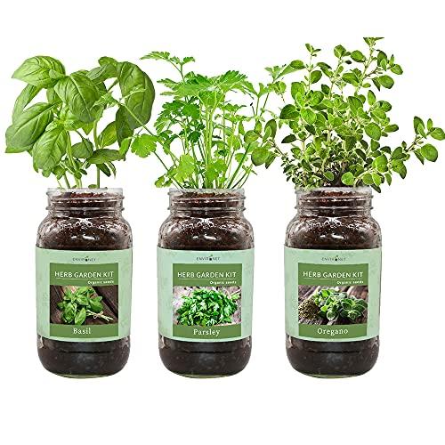 Environet Herb Gift Set, Mason Jar Herb Garden Starter Kit Indoor, Includes 3 Mason Jar, 9...